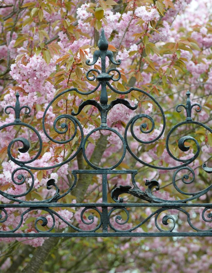 entrance gate with cherry blossoms in background