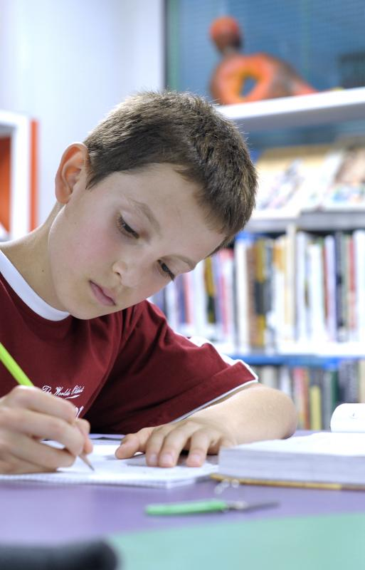 Middle School Pupil Studying