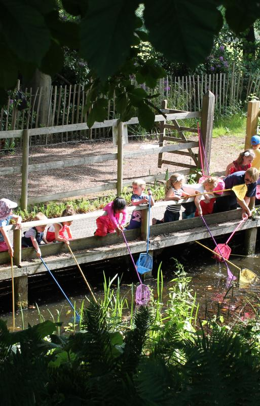 Early Learning Pond Dipping