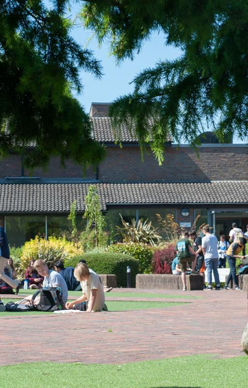 Students sat outside on the grass