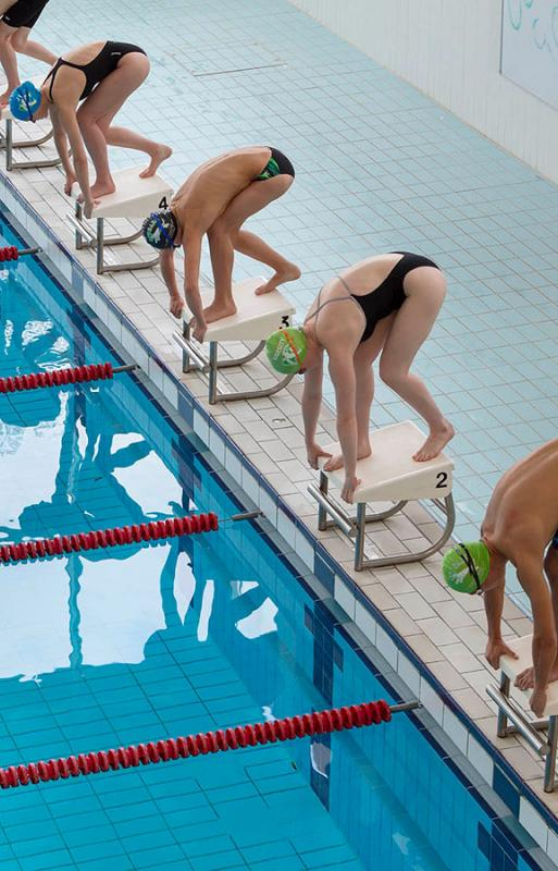 Swimmers on starting blocks lined up for a race